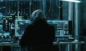 امنیت سایبری هایک ویژن
